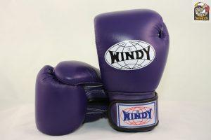 Windy Muay Thai Purple Gloves BGVH