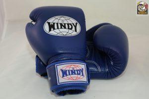 Windy Muay Thai Boxing Gloves Blue BGVH