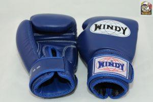 Windy Muay Thai Boxing Gloves Blue BGVH Muay Thai Gear