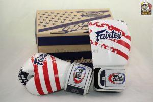 Fairtex Boxing Gloves -USA Pride BGV1