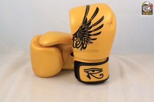 BGV1 Falcon Boxing Tight-Fit Design - Fairtex