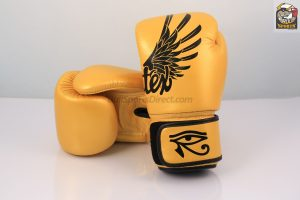 Fairtex BGV1 Falcon Design Boxing Gloves