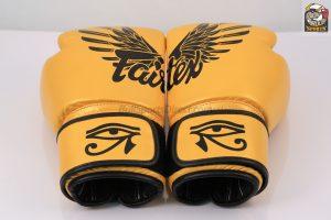Falcon Boxing Tight-Fit Design - Fairtex BGV1