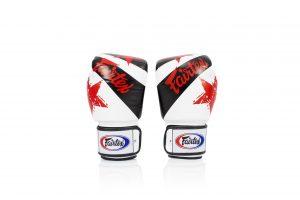 Fairtex Microfiber Boxing Gloves Muay Thai Boxing BGV1 White Nation Gloves