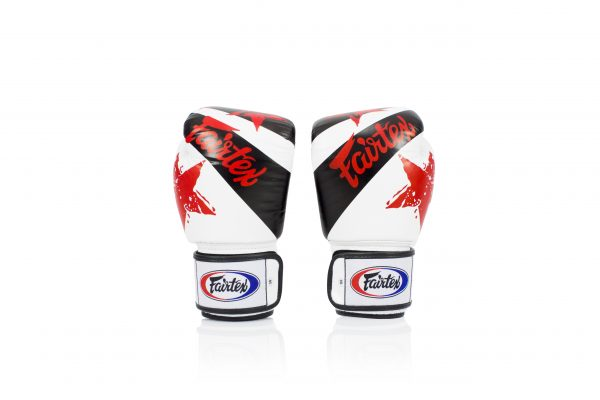 Fairtex Microfiber Boxing Gloves Muay Thai Boxing BGV1 White Nation Gloves