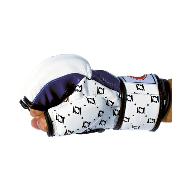 Fairtex Double Wrist Wrap Closure MMA Sparring Gloves - FGV17
